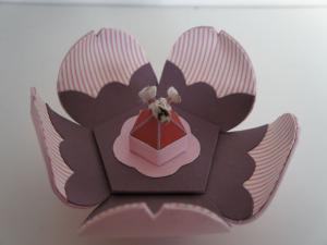 D2-Petite boîte de printemps_R